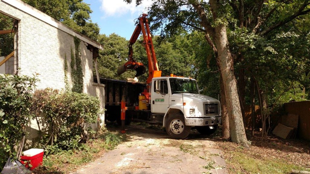 Tree Pruning Nashville